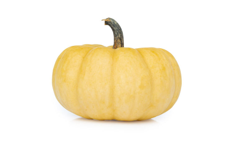 Pumpkin isolated on a white background Holiday Raw Agriculture; Asteraceae; Autumn; Background; Beautiful; Beauty; Bloom; Blooming; Blossom; Blure; Bright; Closeup; Color; Colorful; Cosmos; Countryside; Daisy; Day; Detail; Field; Flora; Floral; Flower; Flowers; Forest; Fresh; Garden; Green; Landscape; Lea Autumn; Forest; Tree; Woods; Nature; Misty; Yellow; Branch; Season; Deciduous; Foliage; Haze; Birch; Grove; Environment; Bush; Fog; Fall; September Decoration Decorative; Food Freshness Halloween Healthy Eating Pumpkin Ripe; Red; Grape; Crop; Vineyard; Fruit; Agriculture; Vine; Cabernet; Leaf; Plant; Green; Purple; Bunch; Blue; Cultivated; Nature; Autumn; Food; Wine Studio Shot Vegetable Vegetable; Vegetables