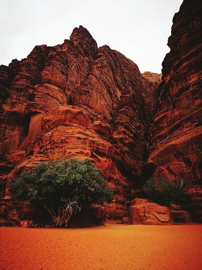 Jordan Wadi Rum JORDAN Wadi Rum National Park, Jordan Mountain Astronomy Desert Red Rock - Object Rock Formation Sky Landscape Canyon Fossil Natural Landmark Geology Prehistoric Era Paleontology
