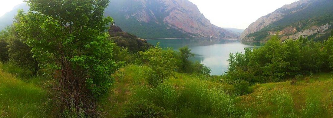 Water Nature Green Catalunya Catalonia Water Reflections Països Catalans Paisatges Catalans EyeEm Nature Lover EyeEm Best Shots EyeEm Best Edits