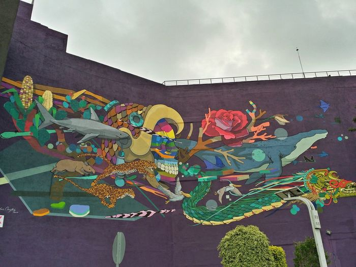 Multi Colored Street Art Sky Outdoors Day Architecture Bird No People