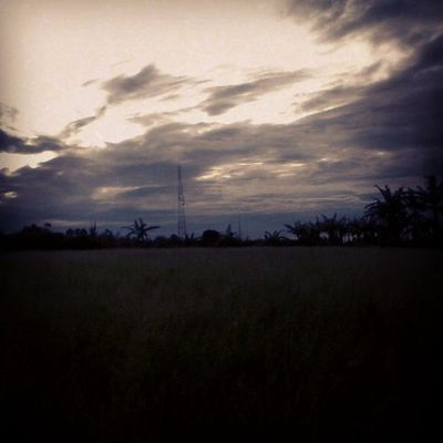 AmateurPhotograph Art Another Sky Cold morning windChill nature loveislove lonelyday landscape_captures landscape tower memories gloomyDay GreenField Photograph