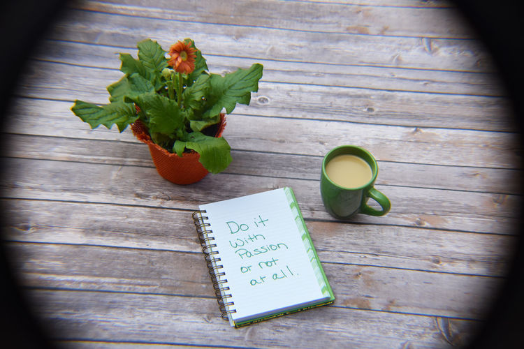Motivational Quote in notebook with coffee and plants I Can And I Will MotivationalQuotes Plant Close-up Day Drink Food Food And Drink Freshness Fruit Healthy Eating High Angle View Indoors  No People Notebook Table Wood - Material