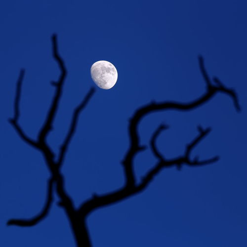 Close-up of moon against blue sky