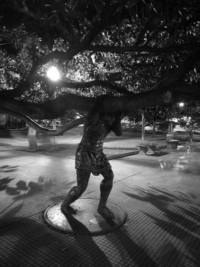 The rodas of recoleta, holding the tree more old of buenos aires city Night Outdoors Travel Destinations Ciudad Autónoma De Buenos Aires Holdi Black And White Friday