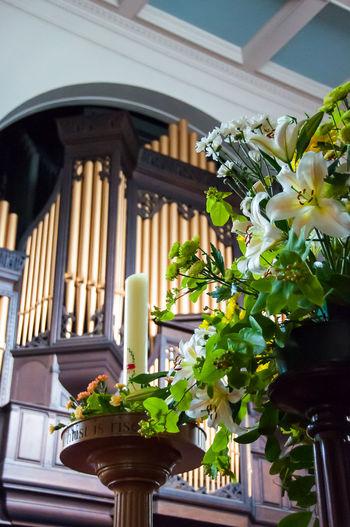 Church Organ Pipes Architecture Candel Candelabra Close-up Day Flower Flowers Indoors  Leaf Low Angle View Nature No People Plant