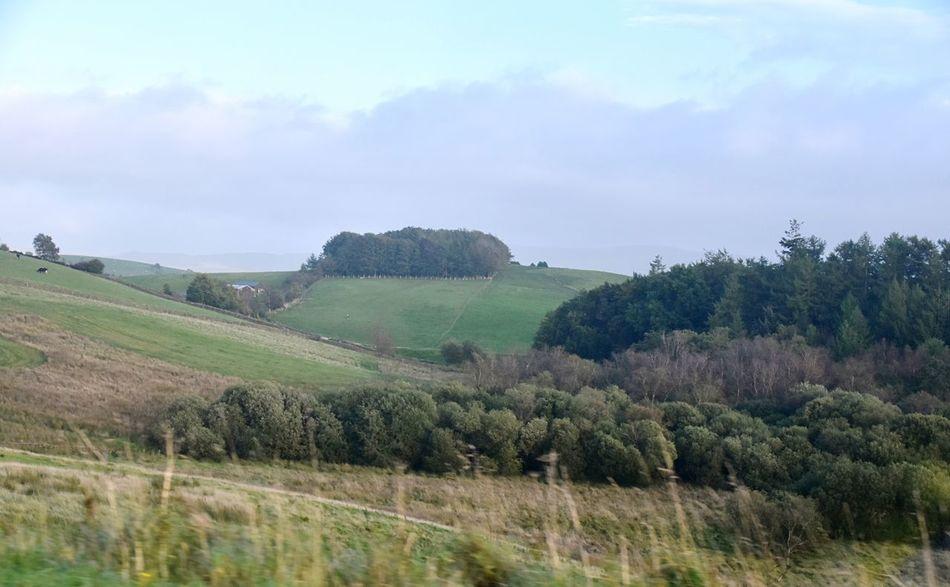 Taking Photos Landscape Trees Hillside Motorway View Nikon D5500