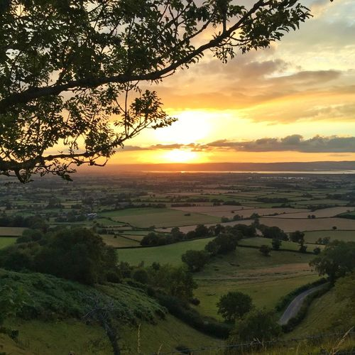 Sunset over the Cotswolds Golden Glow Sunset Sunlit Beauty Summer Cotswold Way Gloucestershire Viewpoint 43 Golden Moments The Great Outdoors - 2017 EyeEm Awards