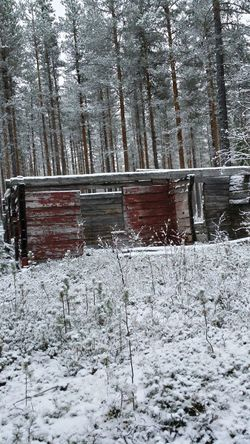 Ängeså Cabin Cabin In The Woods Not Finished Yet Never Will Be Snow Hunting First Snow