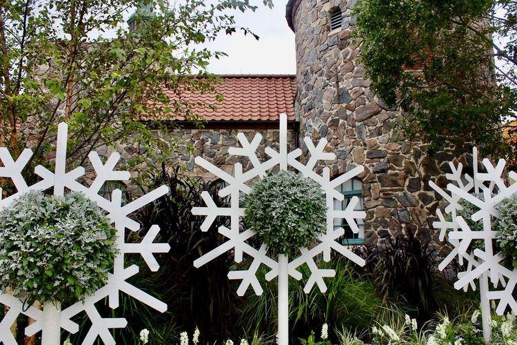 Snowflake Disney Plant Outdoors Tree No People Architecture Day Building Exterior Roof Nature Close-up Sky