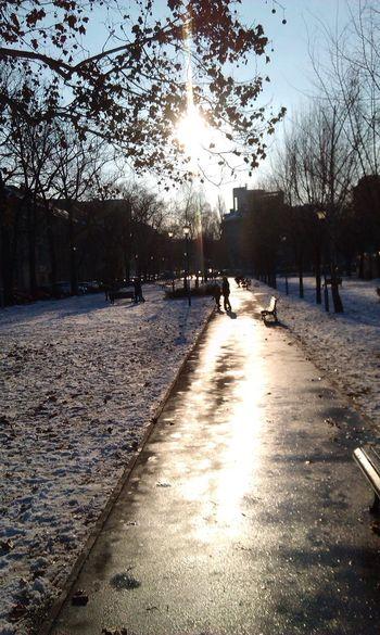 Real People Nature day Zemun Belgrade Serbia Winter Snowy Park