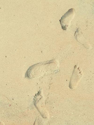 footprint on sand Beach Sand Backgrounds Track - Imprint FootPrint Paw Print High Angle View Close-up Animal Track Horizon Over Water Ocean Groyne Drawn Rushing Seascape Hooded Beach Chair Jellyfish Handprint Seashell Sand Dune Sandy Beach Shore Print Sea Surf Calm Wave EyeEmNewHere