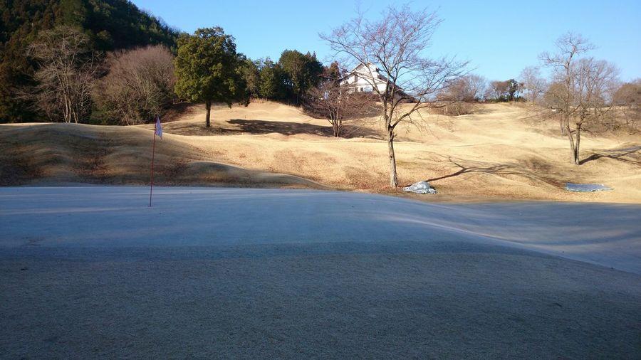 Frozen green Golfing Enjoying Life Holiday Enjoy Golf View Golf Course Sports Golf Winter