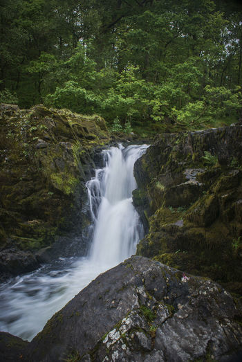 Beauty In Nature Cloudy Day Elterwater Freshness Green Color Lake District Motion Nature No People Outdoors Scenics Speed Tranquility Travel Destinations Tree Water Waterfall