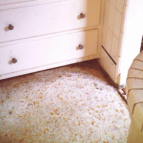 White Kitchen Moment Lens In The Kitchen