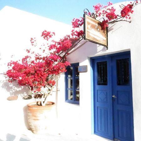 Original Experiences Greece Santorini Oya Oia Santorini