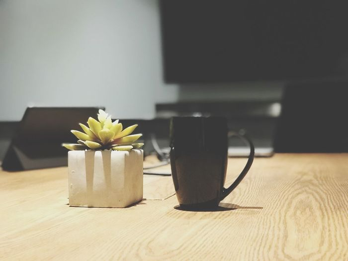 Table Indoors  Plant Flowering Plant Flower Still Life Freshness Mug Close-up Nature No People Wood - Material Food And Drink Focus On Foreground Cup Vase Drink Home Interior Refreshment Coffee Cup