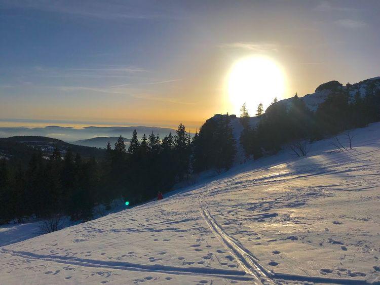 sun downer on Arber Bayerischer Wald Mountain Tourenski Sky Sunset Sunlight Sun Nature Beauty In Nature Scenics - Nature Snow Winter No People Outdoors