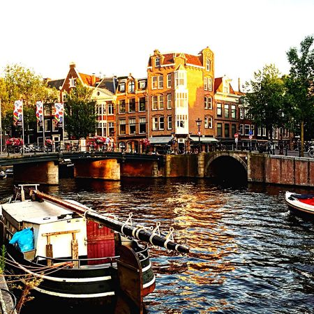 Canals crossing in Prinsengracht Water City Architecture Bridge - Man Made Structure Mode Of Transport Transportation Outdoors Travel Destinations Day Places To See Before You Die Places To Visit Amsterdam Vibe Amsterdam Summer Views Sunnyday