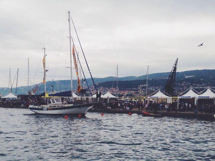 Barcolana 2014 Barcolana Sailor Trieste Italy