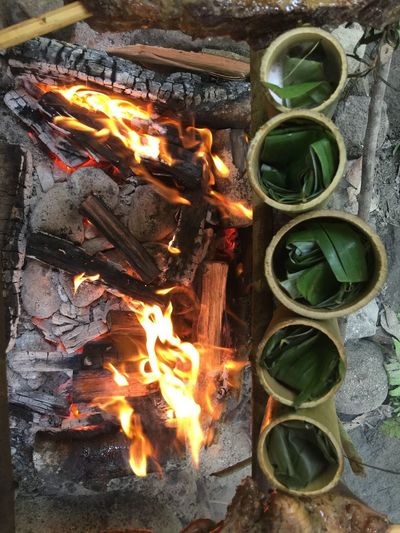 Bamboo cooking Fire Slow Cook BBQ Lemang Bamboo Burning Flame Fire Fire - Natural Phenomenon Heat - Temperature No People Nature Glowing High Angle View Multi Colored Wood Close-up Directly Above Environment Still Life Log Wood - Material