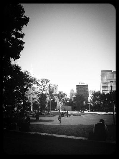 People Watching Walking Around Enjoying The Sun
