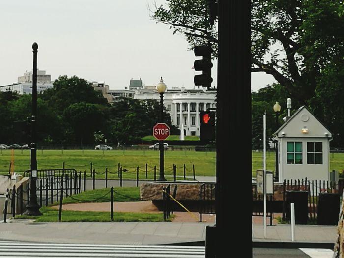 Stop White House Washignton, DC