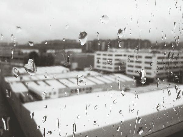 Domingo de lluvia Lluvia Rain Drops Taking Photos