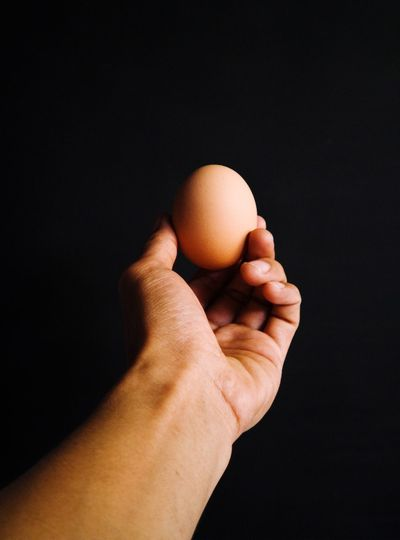 Close-up of hand holding egg against black background