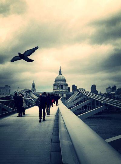 London millennium footbridge leading towards st paul cathedral