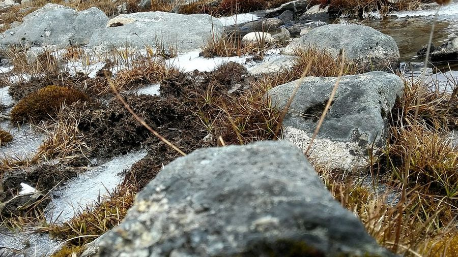 EyeEm Selects Snow Snow ❄ Snowing Rock Rocks No People Grass EyeEm Selects Day Full Frame No People Outdoors Backgrounds Nature Close-up