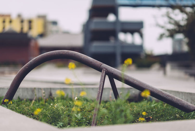 Architecture Building Exterior Built Structure City Close-up Day Focus On Foreground Growth Metal Mode Of Transportation Nature No People Outdoors Pipe - Tube Plant Selective Focus Transportation Yellow