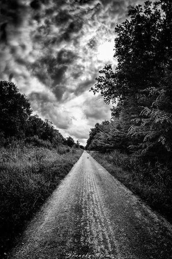 Forest Dark Franckyfoto Nuages Black And White Nature Foret Paysage