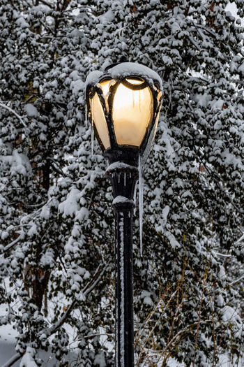 Low angle view of street light on snow