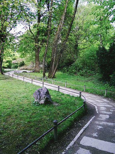 Zickzack Japanisches Teehaus Japanese Garden Pathway