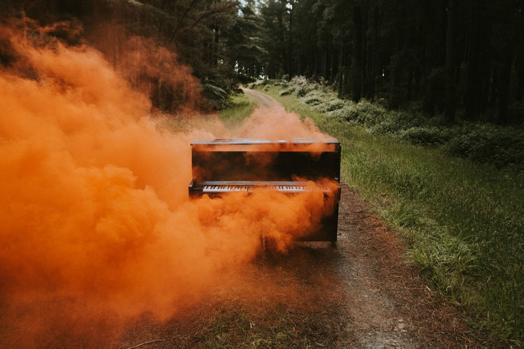 Plant Smoke - Physical Structure Nature Tree Land No People Road Day Field Outdoors Motion Environment Heat - Temperature The Way Forward Landscape Forest Burning Dust Smoke Piano Art Conceptual Musical Instrument Music Flare Dirt Road Nikon Sign Analogue Sound