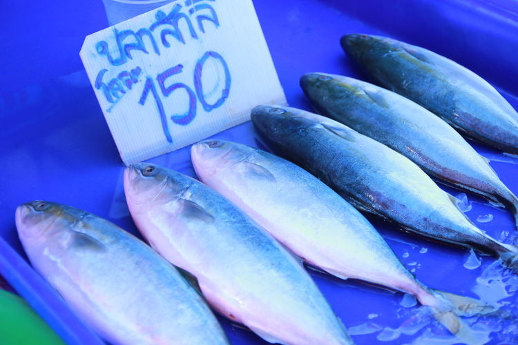 Food And Drink Food Freshness Market Retail  For Sale Fish Wellbeing Healthy Eating Blue Close-up Text No People Price Tag Still Life Vertebrate High Angle View Raw Food Market Stall Animal