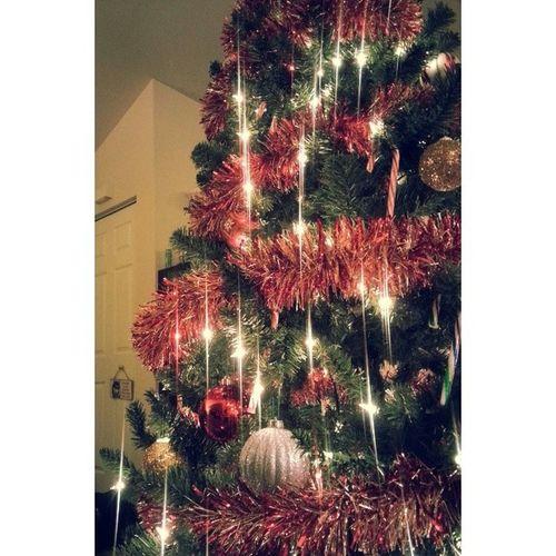 Tree is finally