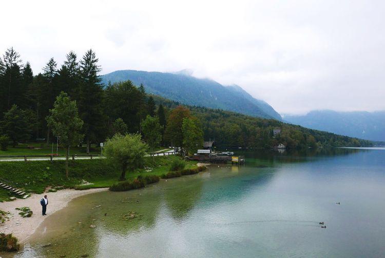 Mountain Nature Tree Water Beauty In Nature Sky Tranquility Scenics Day Outdoors Lake View Slovenia Bohinj, Slovenia