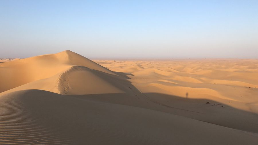Pure sand dune early morning Dubai Emirates Dunes Desert Climate Change Global Warming Sand Dune Sand Desert Landscape Climate Arid Climate Land Scenics - Nature Tranquility Tranquil Scene Beauty In Nature Environment Nature Non-urban Scene Day Remote Clear Sky Copy Space