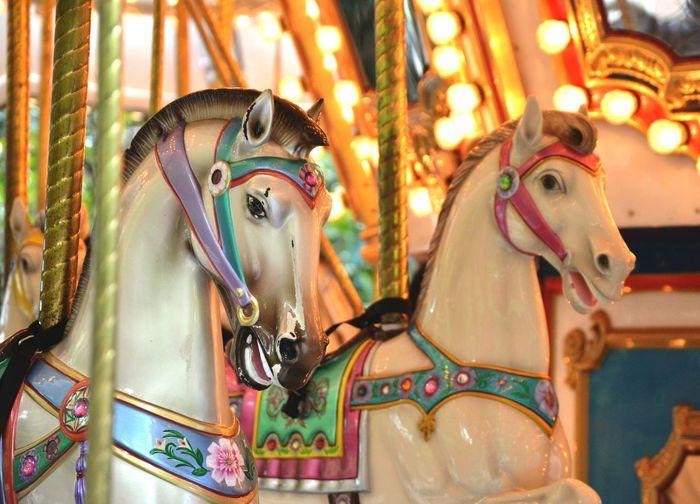 Close-up of carousel horses in amusement park