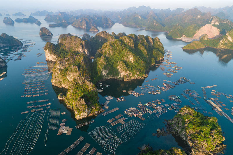 Ha Long Bay Bai Tu Long Bay Fishing Boat Fishing Industry Sea Seascape Sea And Sky Sea Life High Angle View Drone  Floating Rafts Water Nature Scenics - Nature Beauty In Nature Tranquility No People Fish Farm Blue Sea Island Limestone Islands