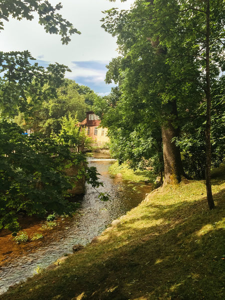 Aleksupite river winding through town, Kuldiga. Latvia Change Day Flowing Flowing Water Forest Grass Green Green Color Kuldiga Latvia Leading Lush Foliage Narrow Nature Outdoors Park Plant Relaxing Moments River Summer Summertime The Way Forward Tranquil Scene Tranquility Tree