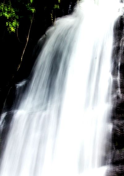 Waterfall Nature Blurred Motion Tree Forest Outdoors Shorttrek India