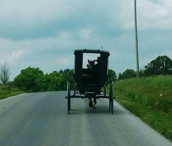 Amish Country Buggy Old Country Simple Things In Life Religious Beliefs Driving Road Horse Carrige Simple Wagon  Travel Wonder Outdoors