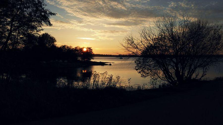 Sunset Sky Nature Helsinki Scenics Tranquil Scene Outdoors Tree Finland Huawei Honor