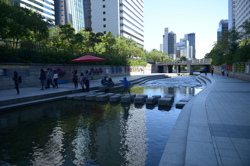 River Architecture Built Structure City Building Exterior Water Building City Life Reflection Nature Group Of People Office Building Exterior Tree Real People Men People Plant Skyscraper Day Outdoors Modern Rain Cityscape
