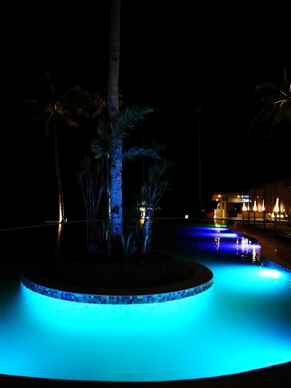 night, illuminated, fountain, long exposure, swimming pool, water, motion, no people, light trail, blurred motion, outdoors, blue, palm tree, tree, architecture, nature