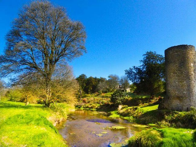Ireland Taking Photos Blarney Castle Enjoying Life Photography The Places I've Been Today