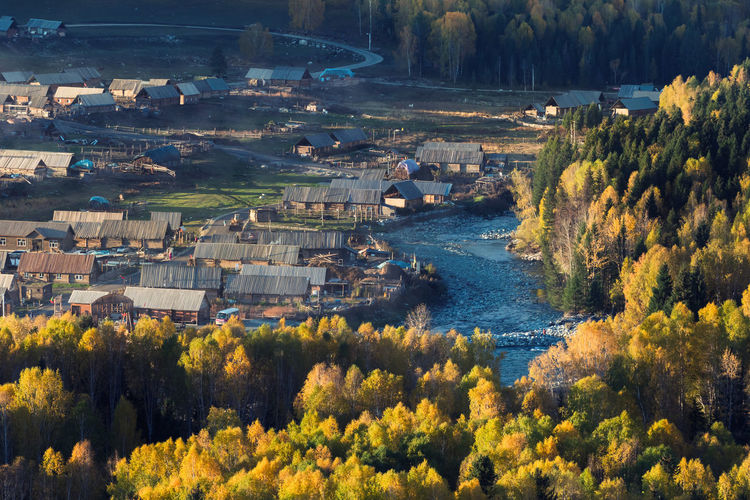 View of Hemu village in Autumn time, Xinjiang, China. The famous village for tourist Autumn China Beauty Famous Green Color Kanas Lake Morning Nature Scenary Tourist Adventure China China Colorful Fall Forest Hemu Village Hut Kanas Lake Landscape Landscape #Nature #photography Mountain Nature_collection Travel Destinations Village
