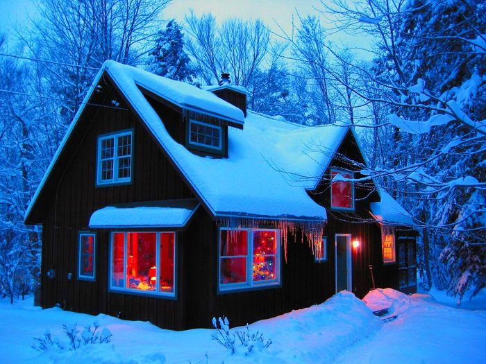 Winter Snow Illuminated Building Exterior Cold Temperature Tree Window Architecture No People Built Structure Christmas Night Outdoors Snowing Sky
